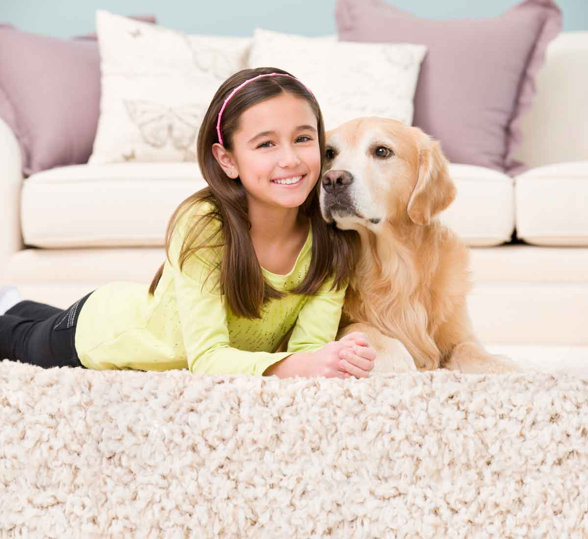 pet urine stain and odor removal